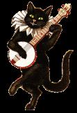 Quirky funny song adaptations; cat banjo