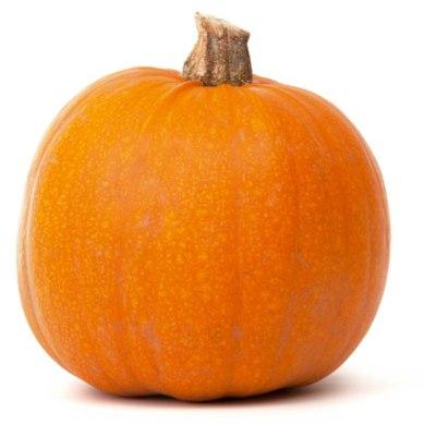 pumpkin-isolated-4