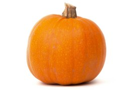 pumpkin-isolated